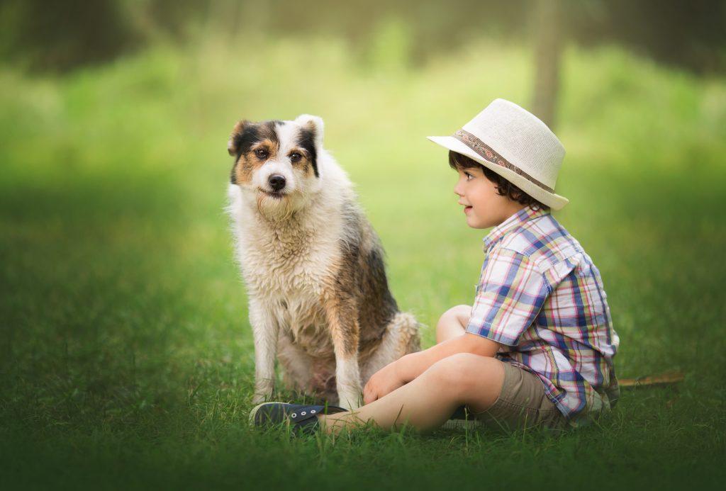 foto niño perro cantabria