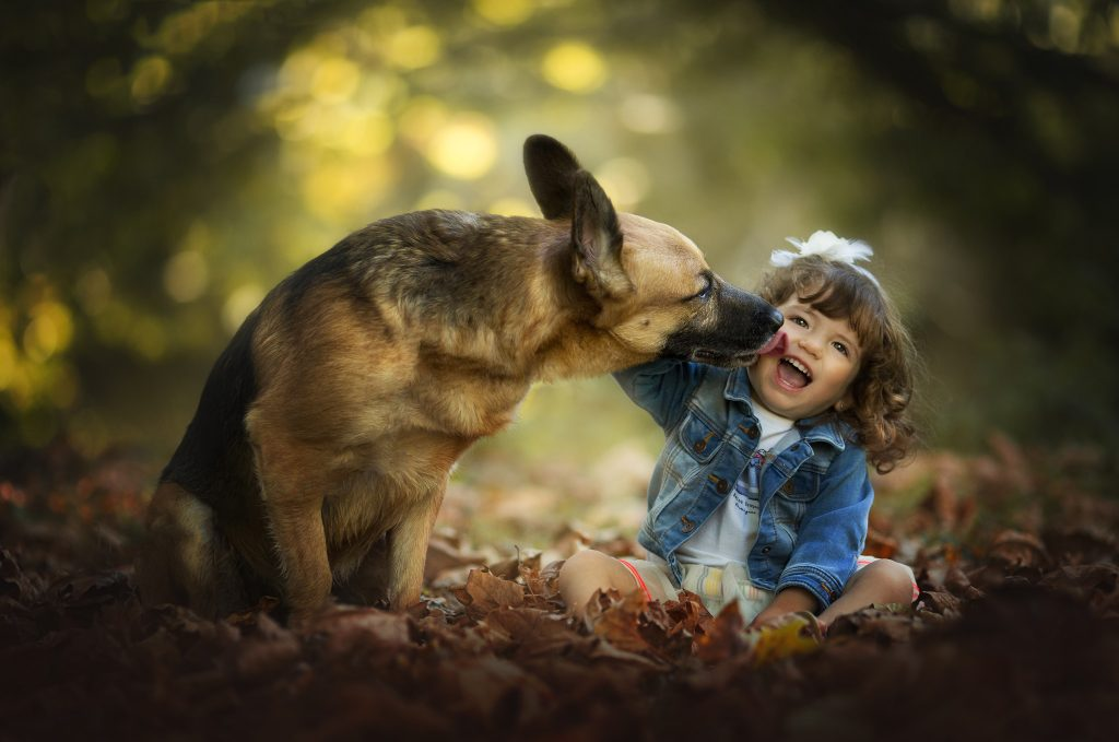 foto perros niños cantabria