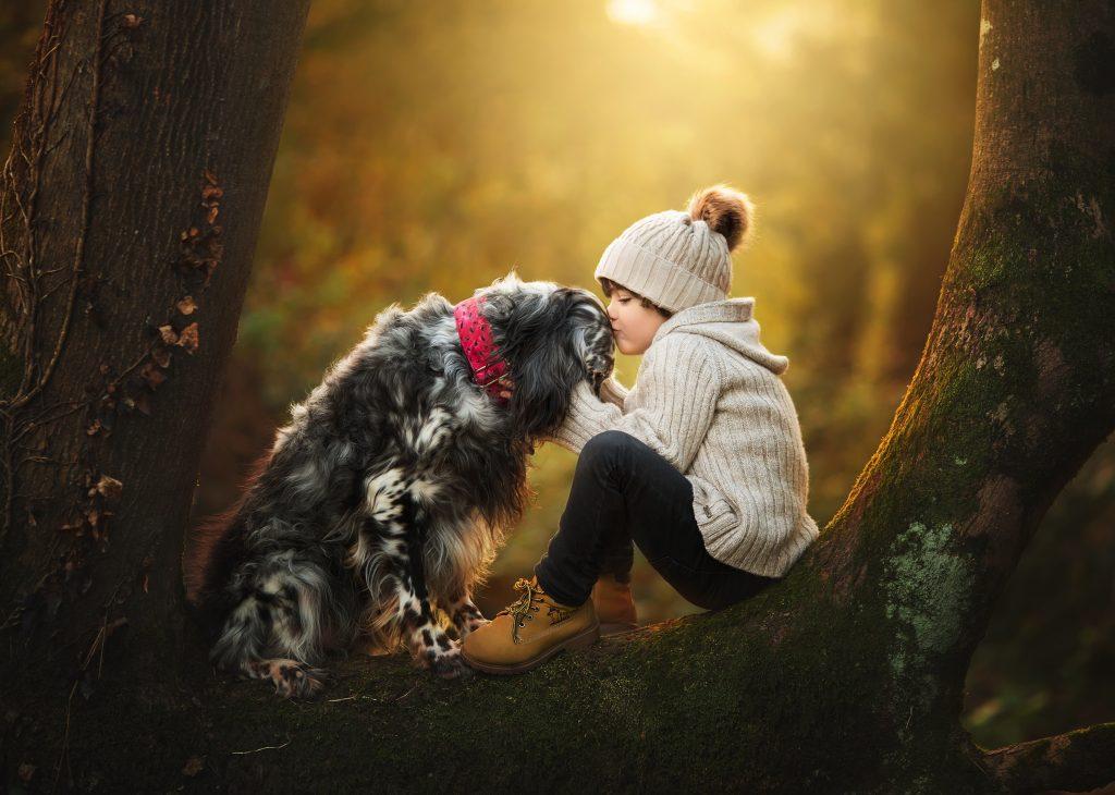 fotos perros niños cantabria