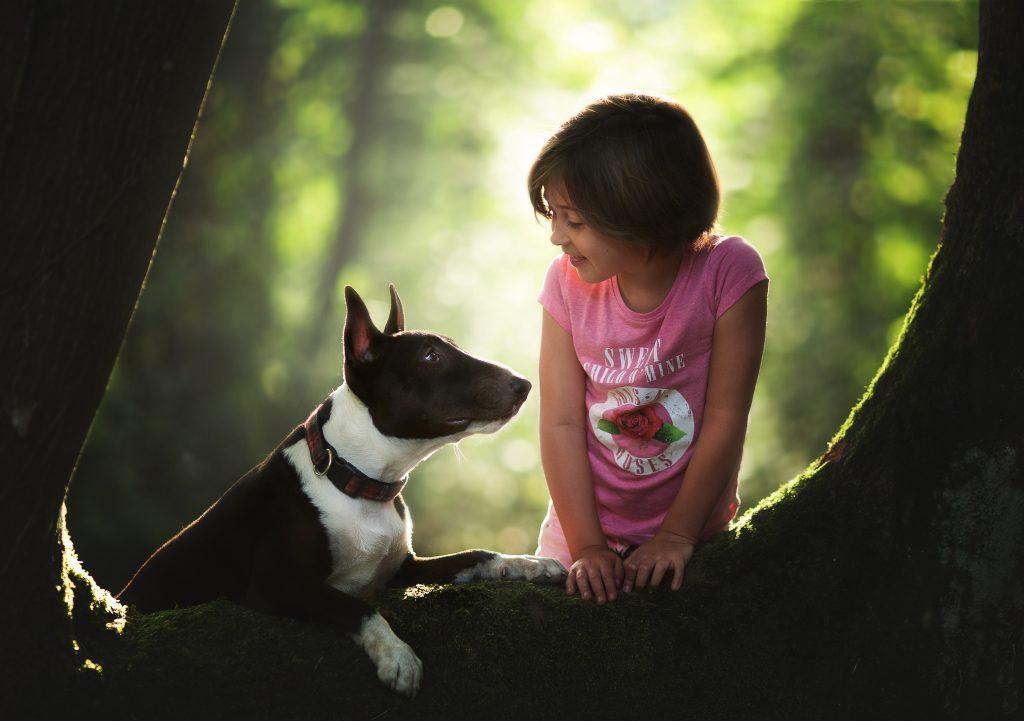 fotografia profesional niños perros vizcaya