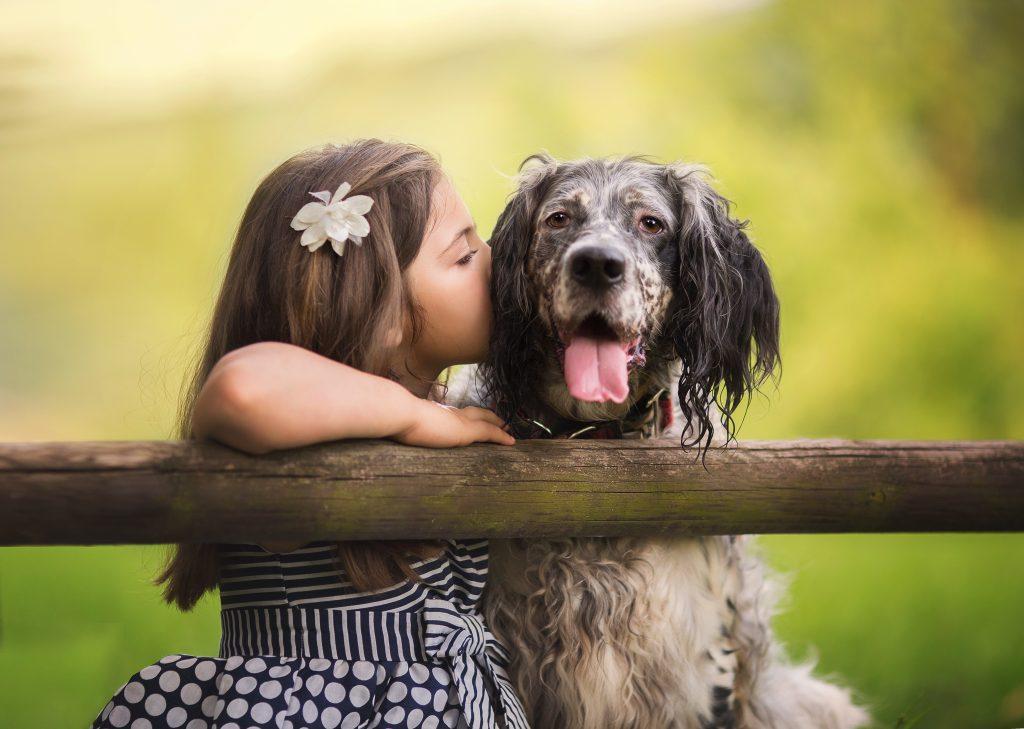 fotografia profesional niños perros bilbao