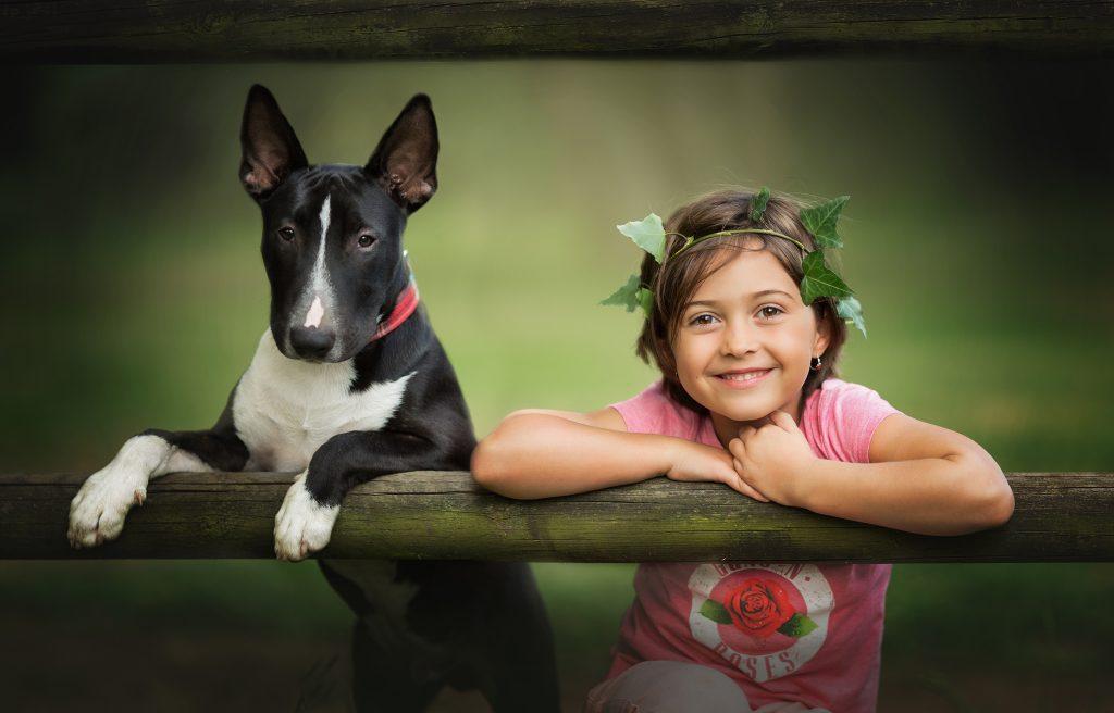 foto niños perros cantabria bull terrier