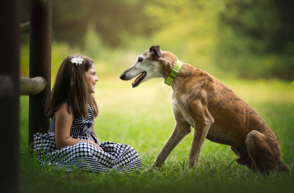 fotografia profesional niños perros cantabria