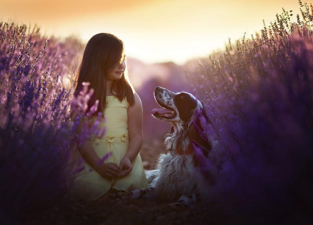 fotografia niños perros cantabria lavandas